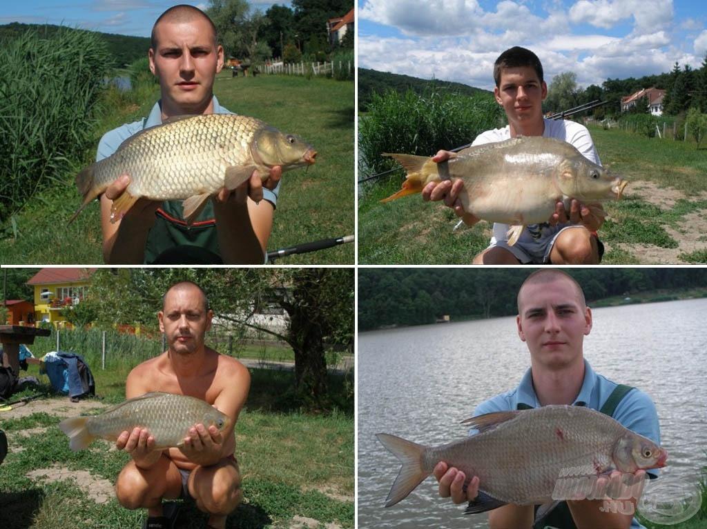 További halak