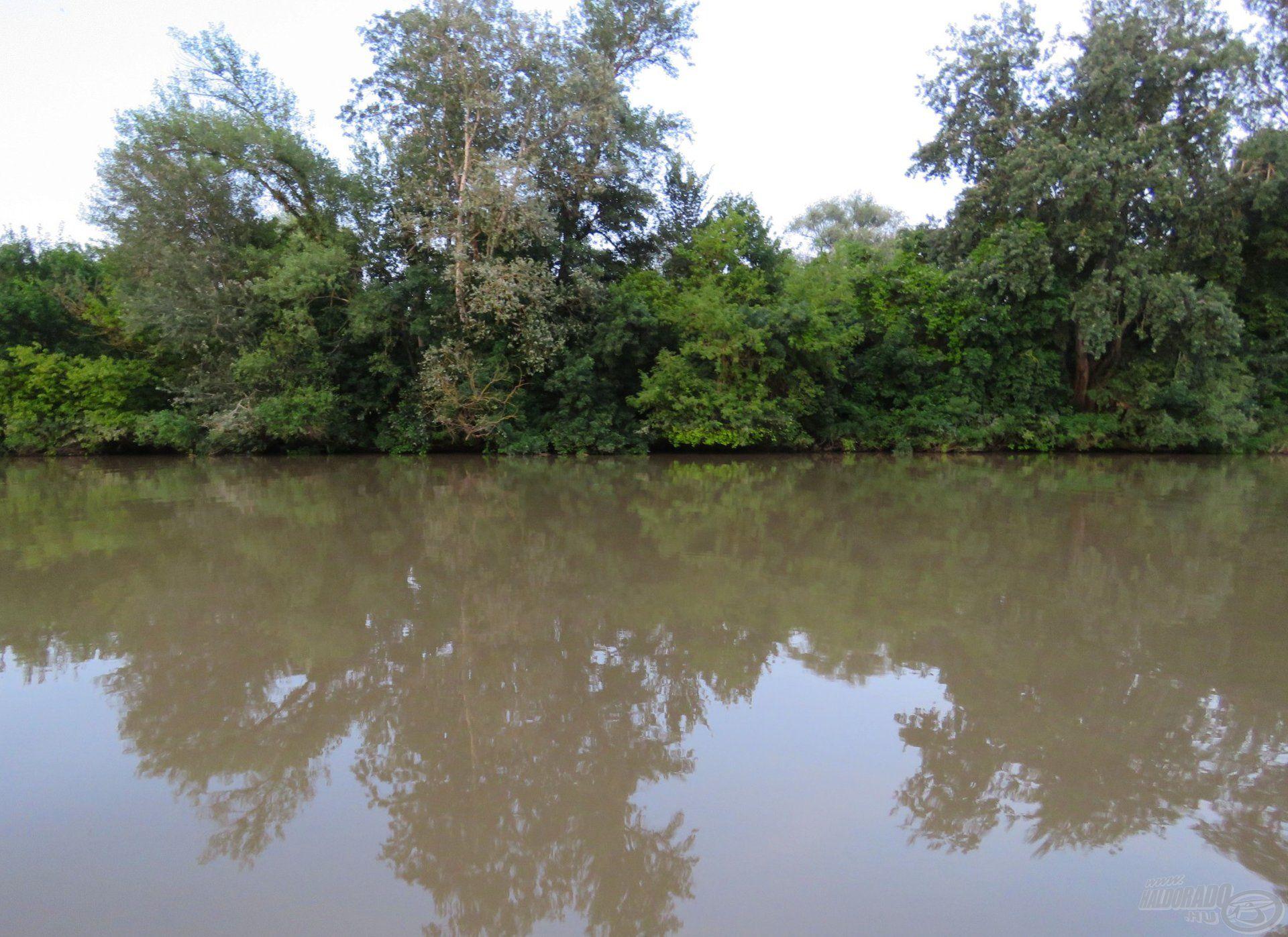 Heves zivatar után szőkülő folyó