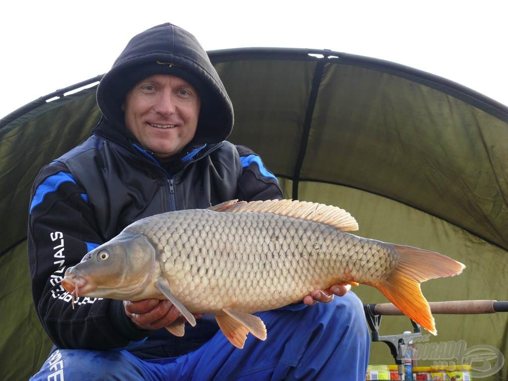 Örül a horgász, ha ilyen szép halak kerülnek időlegesen partra…