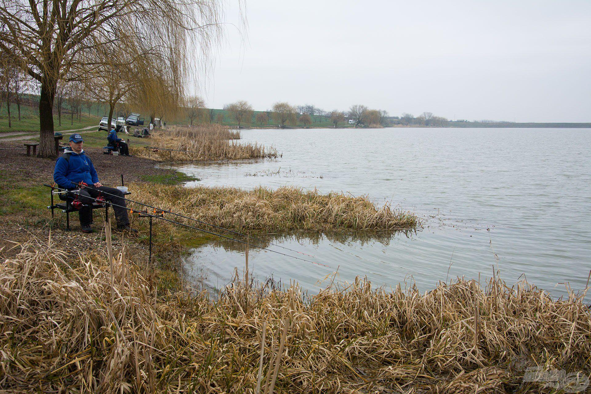 A tó sekélyebb felén ültünk le. Nyugodtan indult a nap, a part is szépen megtelt, de egyetlen pontykapás nélkül megúszta mindenki