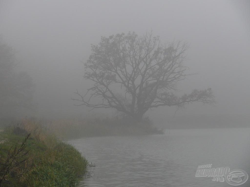 A hűvös, ködös idő egész nap kitartott