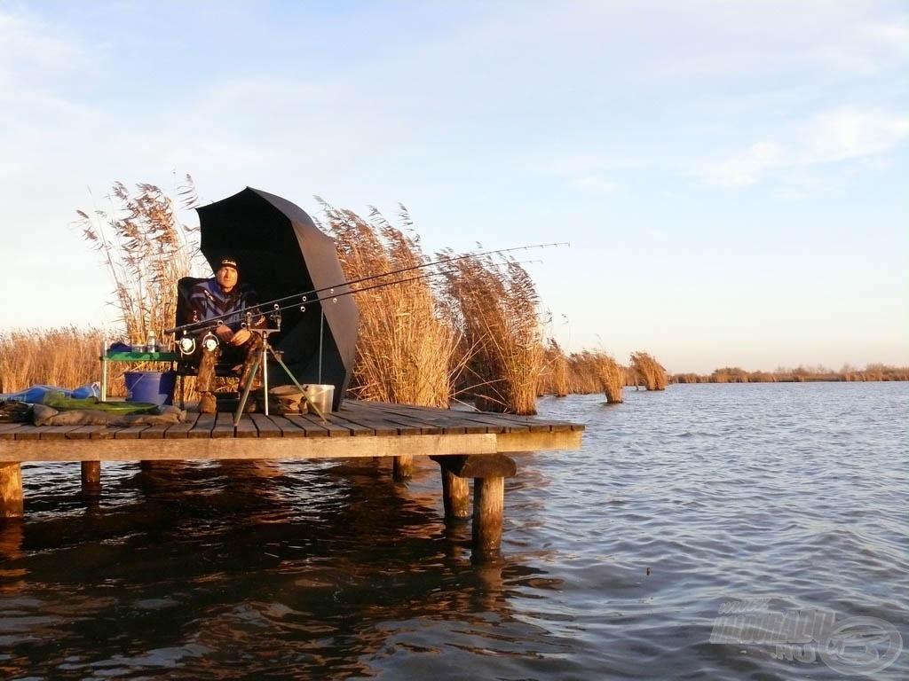 A kiválasztott horgászhelyem a III. sz. tó északi oldalán, egy nádason átvezető stégen volt