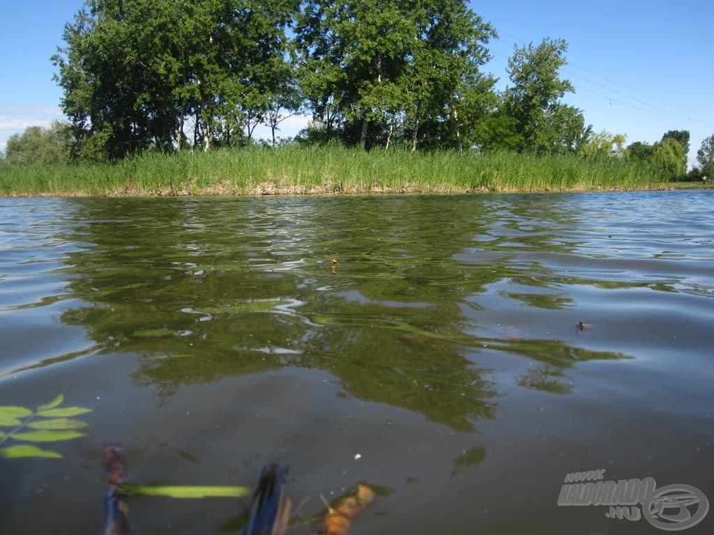 Horgászhelyem most (hát, nem itt mutatom meg, hogyan kell nagyot dobni :))…