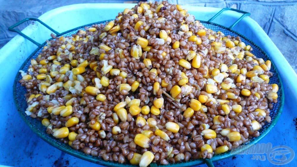 Az amur mindene a főtt búza és kukorica
