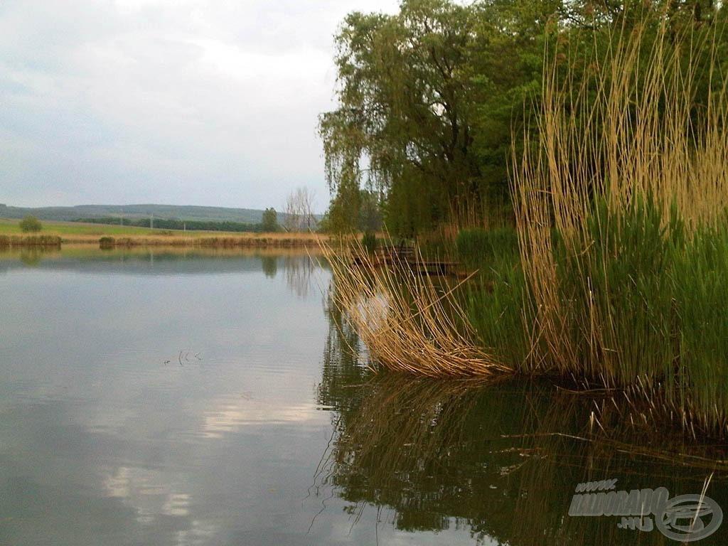 A kis tó még kevésbé művi