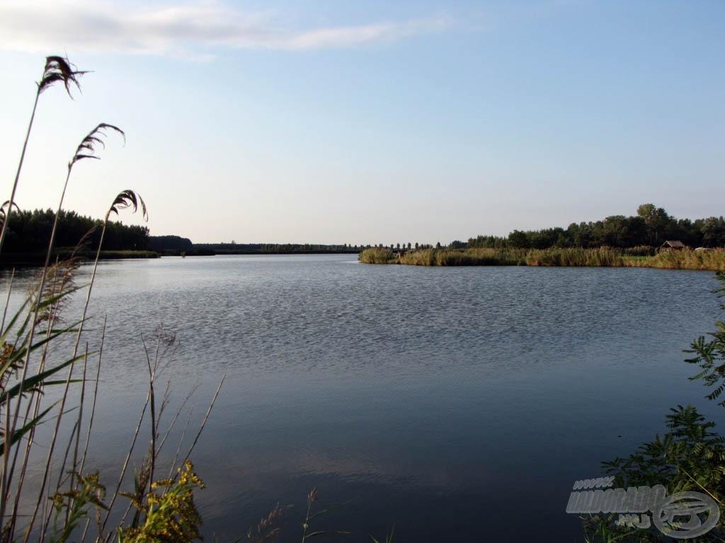 … és a csapadékhiány ellenére a tóban maximális volt a vízmennyiség!