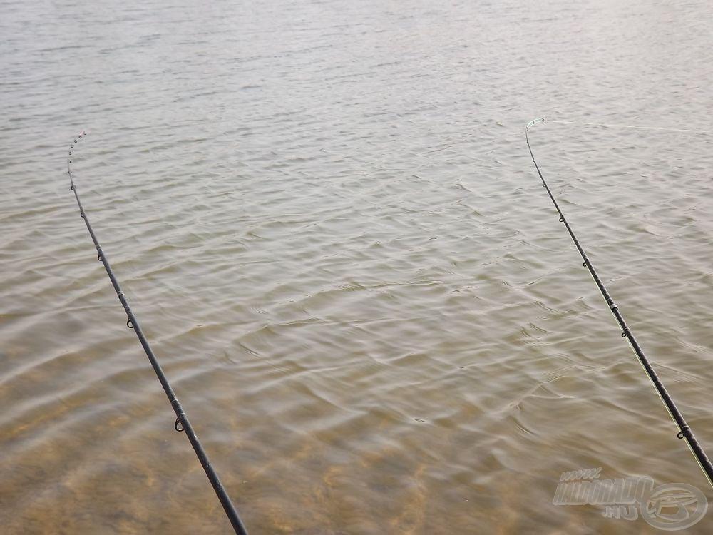 Egy 4,2 m hosszú MH és egy 3,6 m hosszú MH feederbottal horgásztam