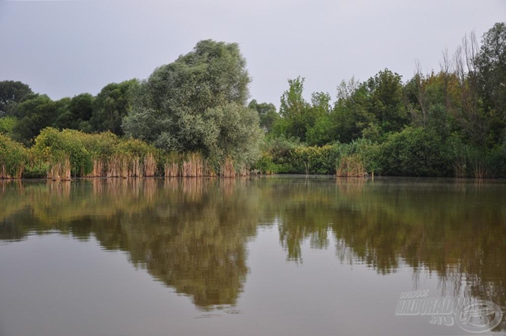 Kimondottan nehezen meghorgászható a tó nagy része