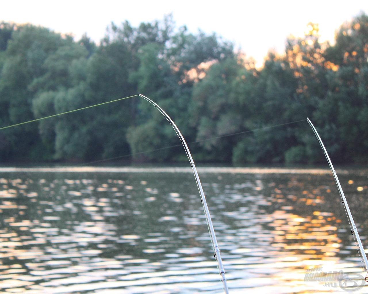 Az egyik legnépszerűbb módszer a feederezés, így jöhetnek állóvízi vagy folyókon készült beszámolók is…