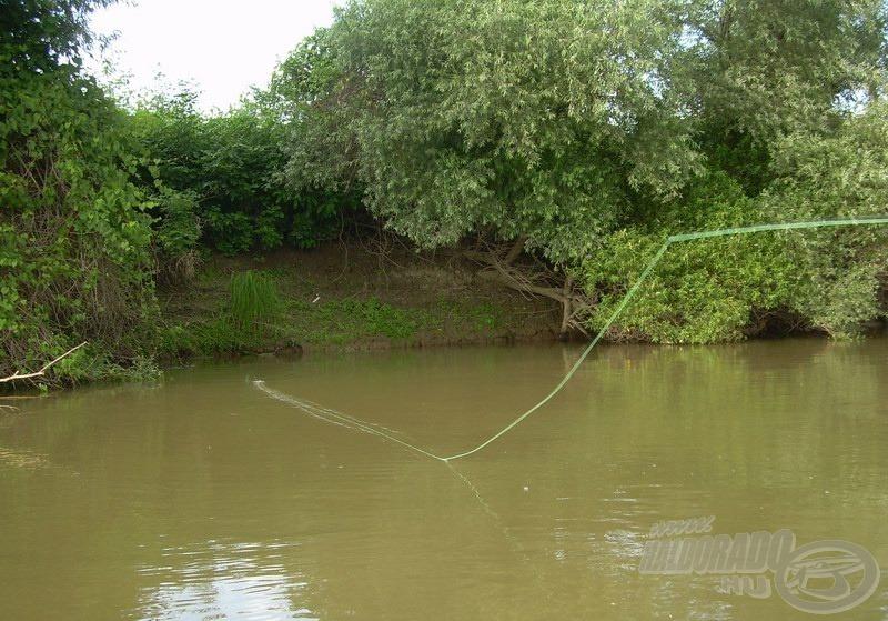 A vízbe lógó bokrok környékén beeső műlégyre gyakran van kapás