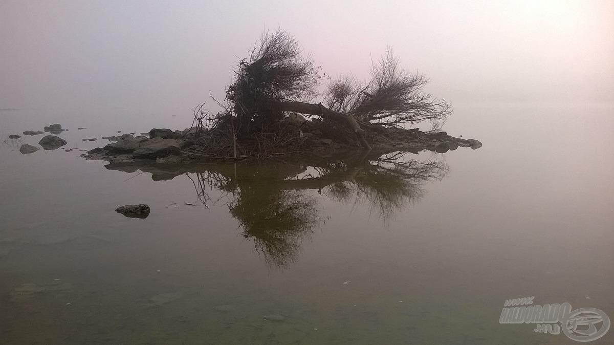A vadászterület ködben