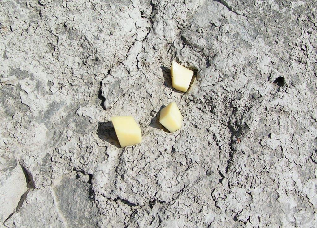 Még hogy nem sajtból van a hold! Pedig abból van, a képen is látszik… (Magyarázat: kitettem a kövekre aszalódni a sajtkockát és egyből a holdbéli táj jutott eszembe a nagy kánikulában)