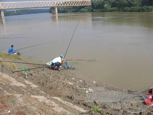 Közben a Tiszán horogra akadtak az első halak