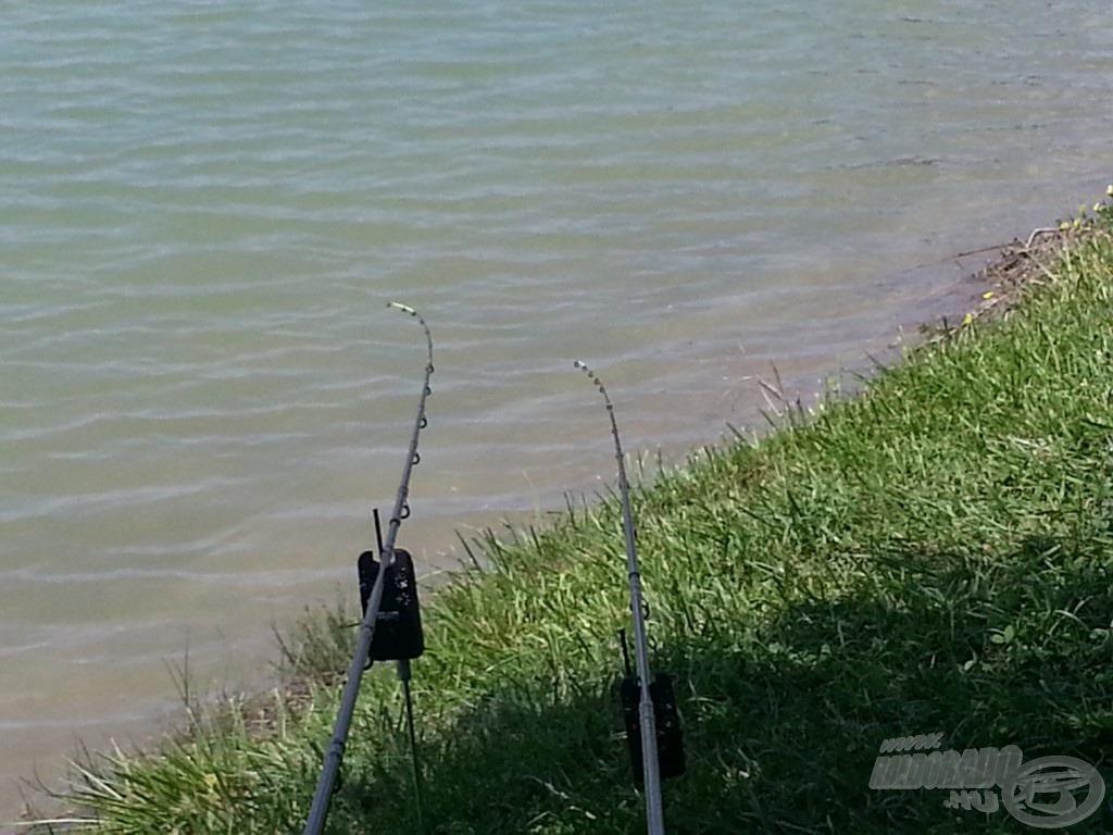 Minden horgász rémálma: mozdulatlan spiccek