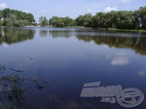 Mersevát egy jól átlátható, nagy nyitott vízfelületű tó, partján náddal és fákkal