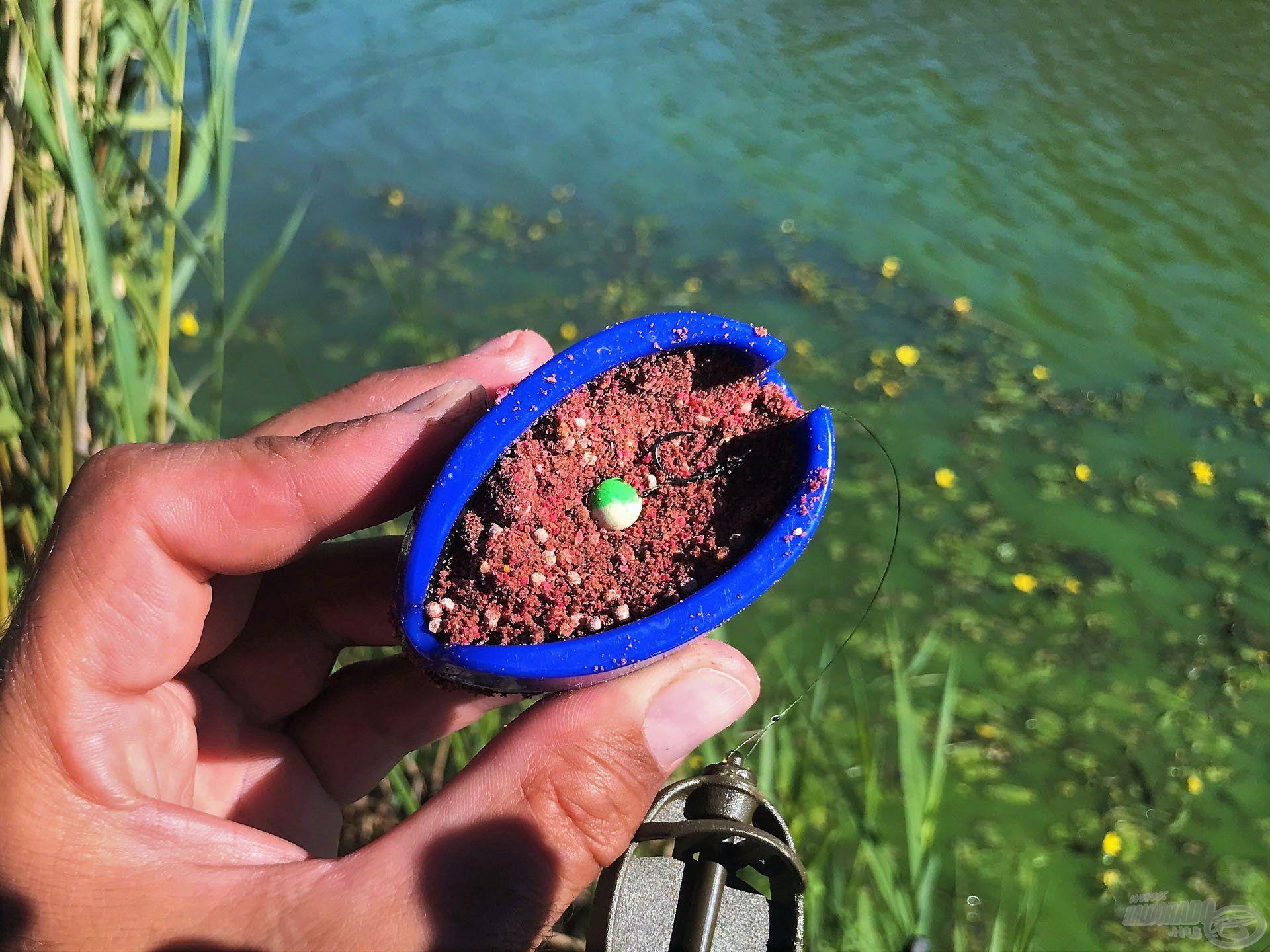 Növényekkel tarkított horgászhelyen a csalit nem a kosár tetejére, hanem a gombóc belsejébe érdemes tenni