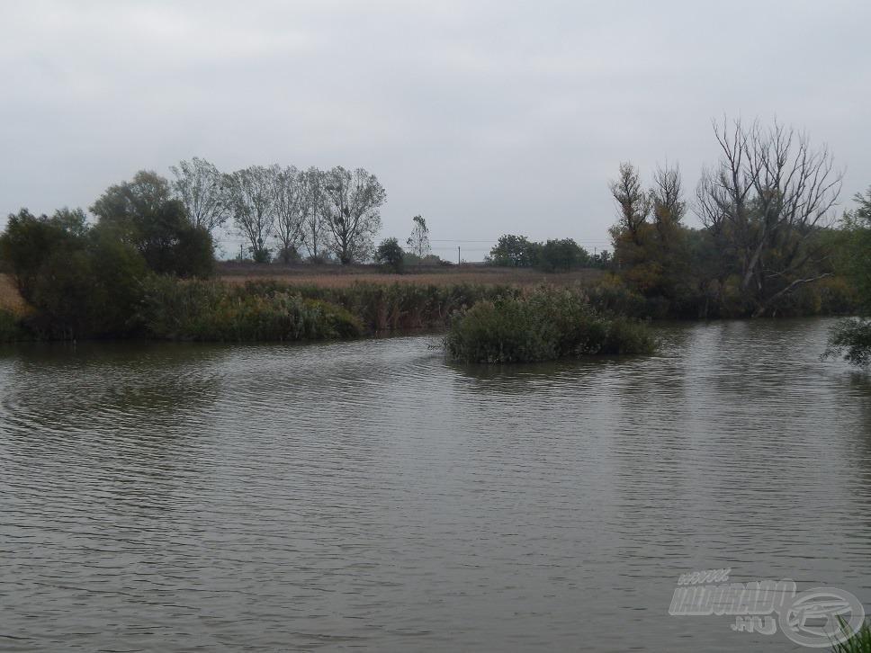 A meghorgászandó helynek a túloldali nádsziget bal oldalát, illetve az attól nagyjából 20 méterre található csatornát választottam. Nemsokára kiderült, tökéletes választások voltak