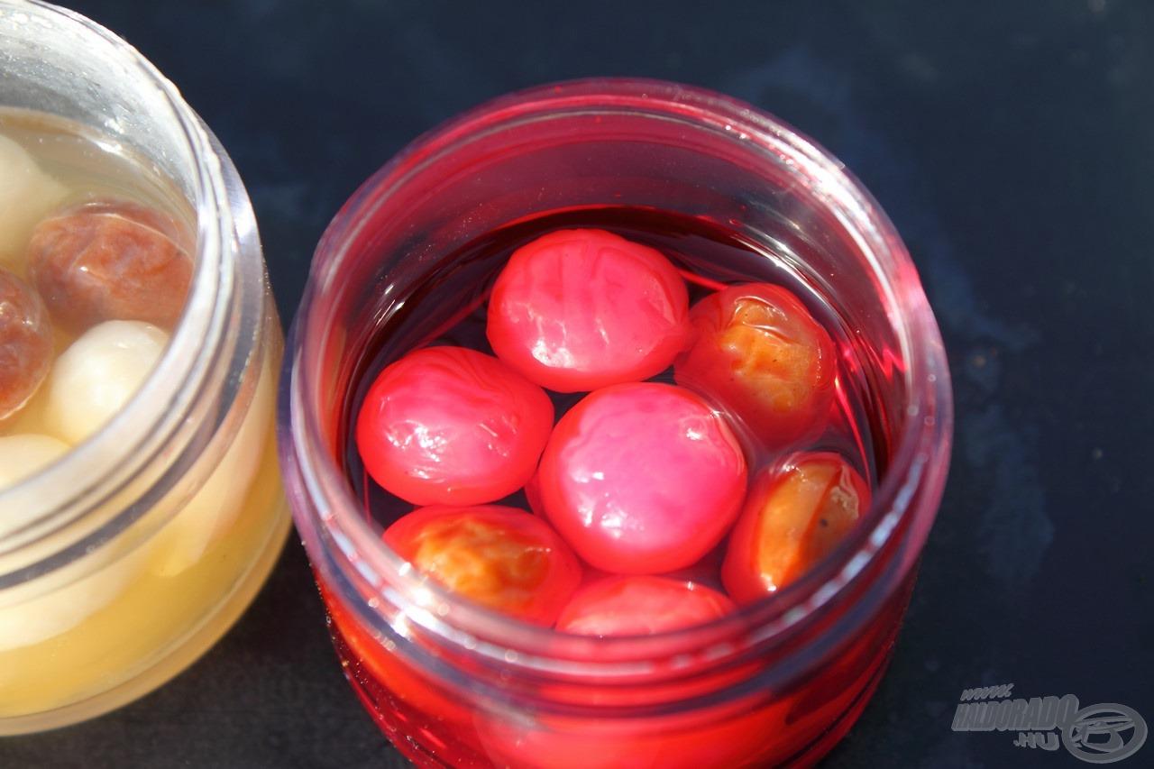 A SpéciTigernél barna az alapszín, amely mellé szintén fluo színek társulnak