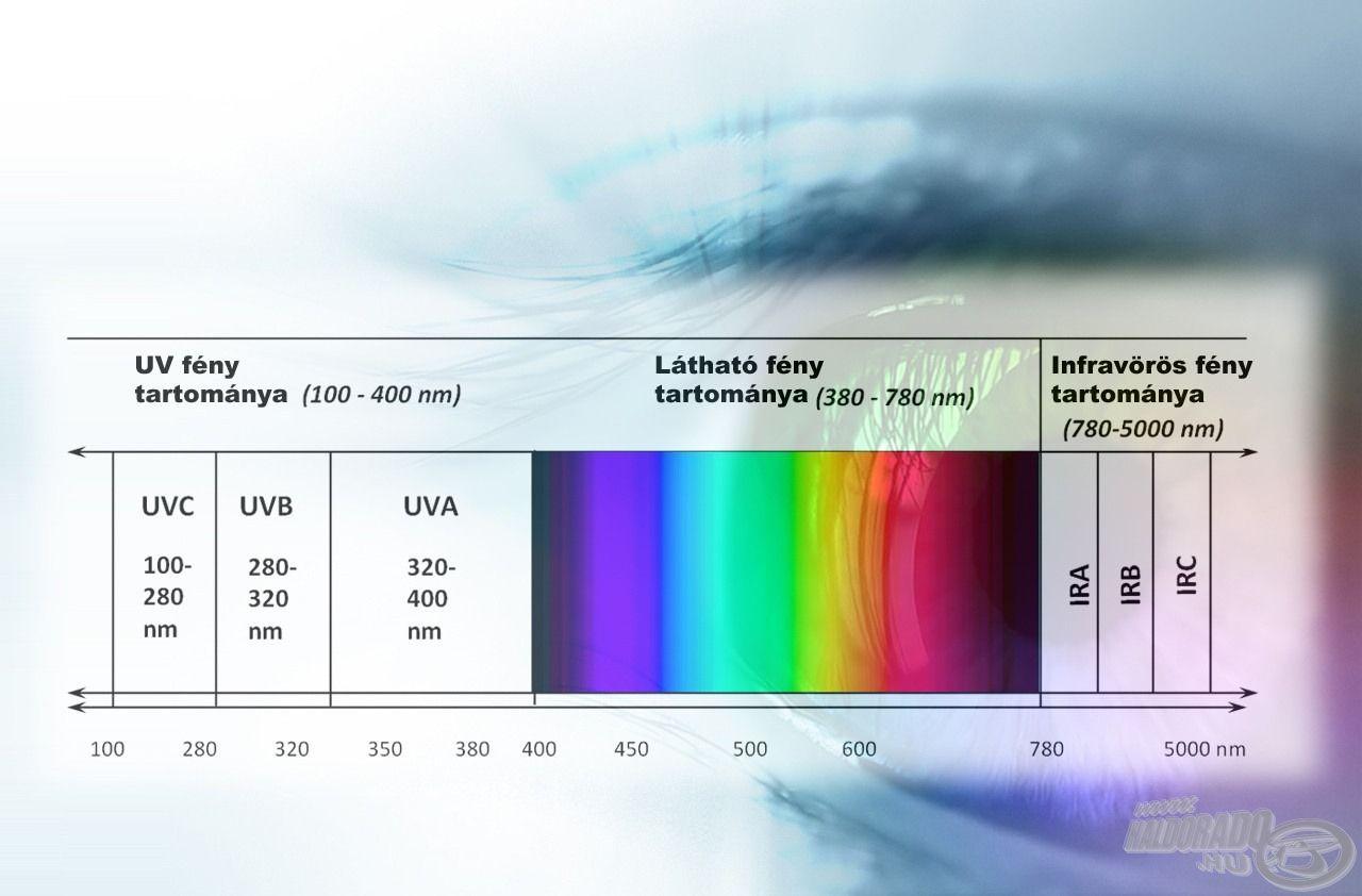 Az ultraibolya sugárzás lassan, fájdalommentesen - nem érezzük azonnal kártékony hatását -, de fokozatosan roncsolja szemünket