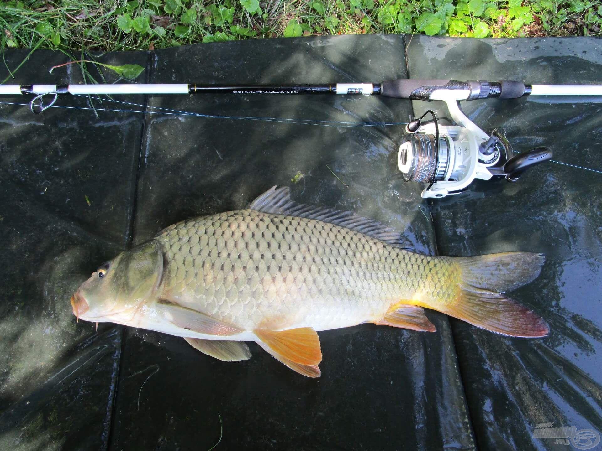 A kereső horgászat is eredményesnek bizonyult!