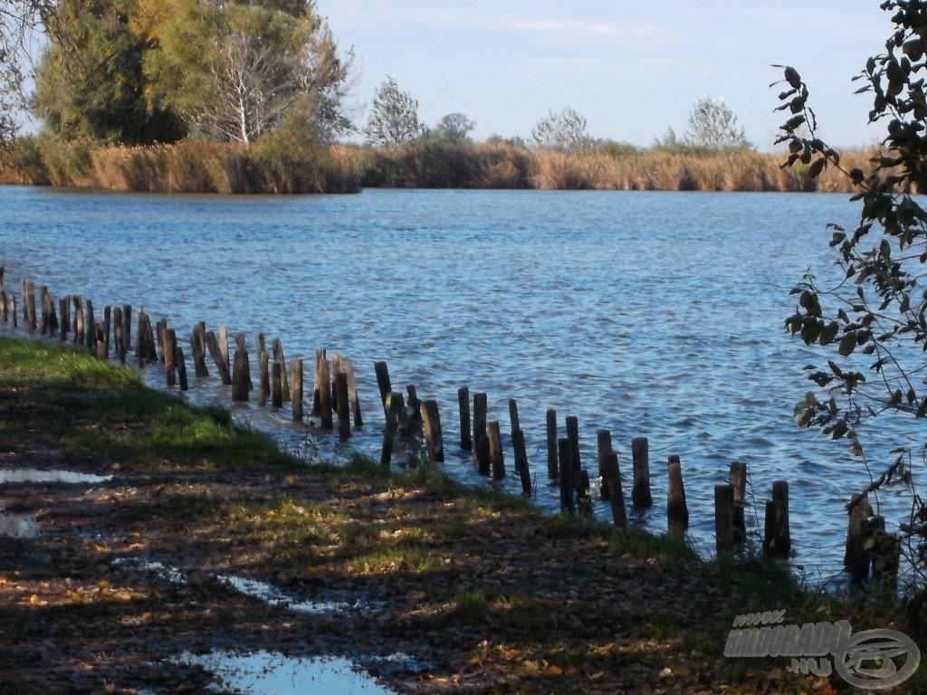 Gyönyörű, háborítatlan tó, mintha egy igazi vadvízen lennék