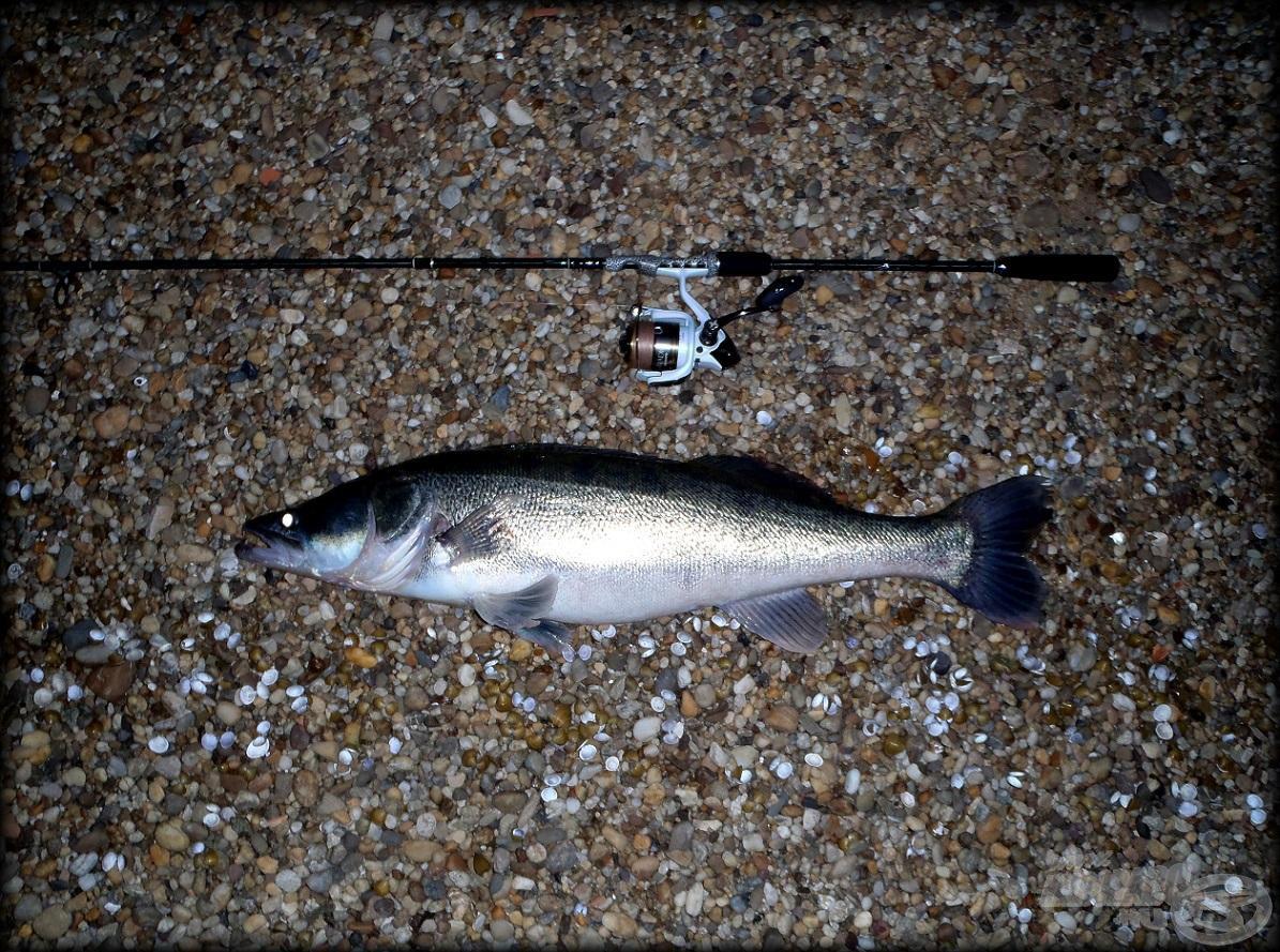 Nem igazán éreztem halat aznap a pályán - szerencsére tévedtem