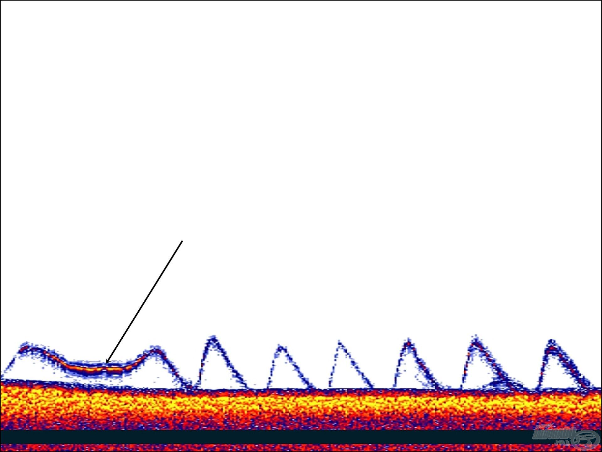 Jelen ábrán a nyíllal jelölt résznél megtartottam a wobblert, így erősebb jelet kaptam vissza, amit más színnel is hozott a Deeper