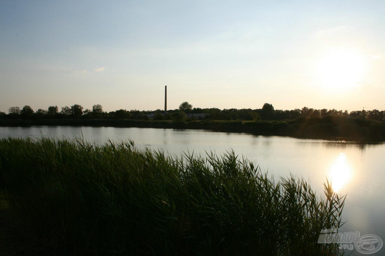 A tó partszegélyét nádas kíséri, a karbantartott horgászhelyeket rendszeresen takarítják