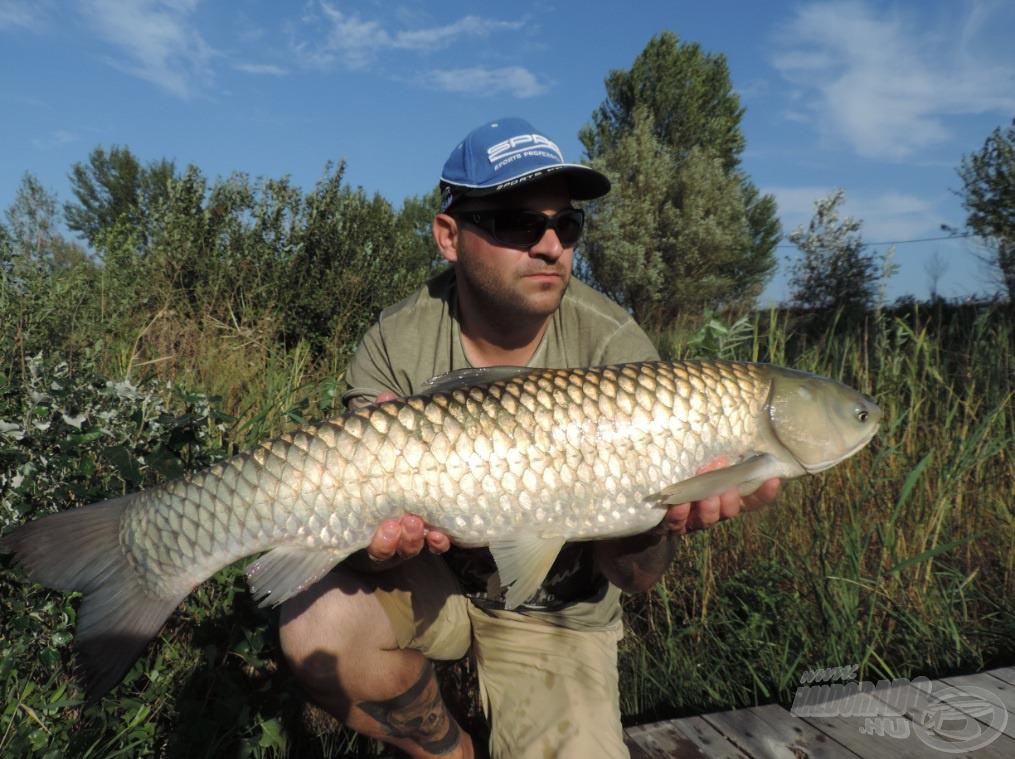 A tó búcsúajándéka ez a gyönyörű, 7,5 kg-os amur volt