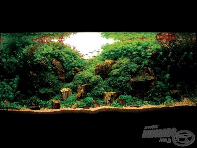 Field of Dream 100 x 40 x 40 (cm), 160 liter