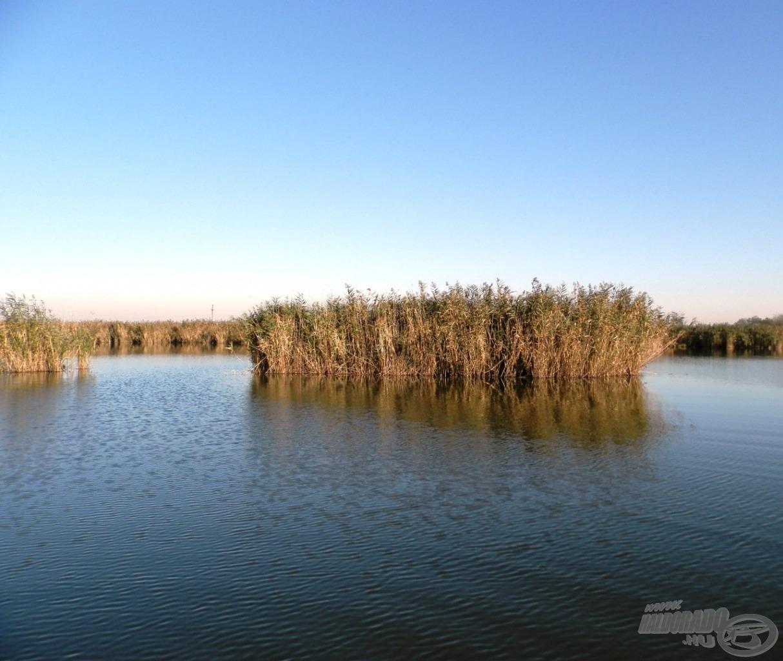 Nádszigetek a tó közepén