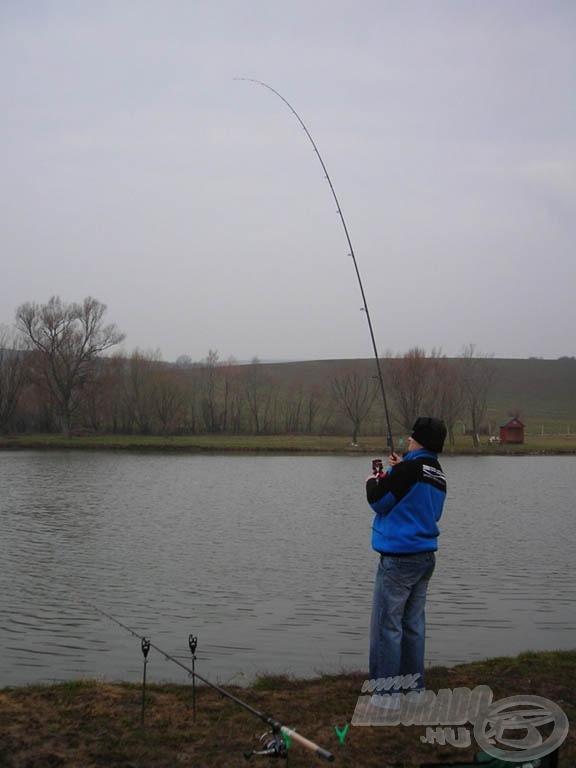 Horgon az év első hala