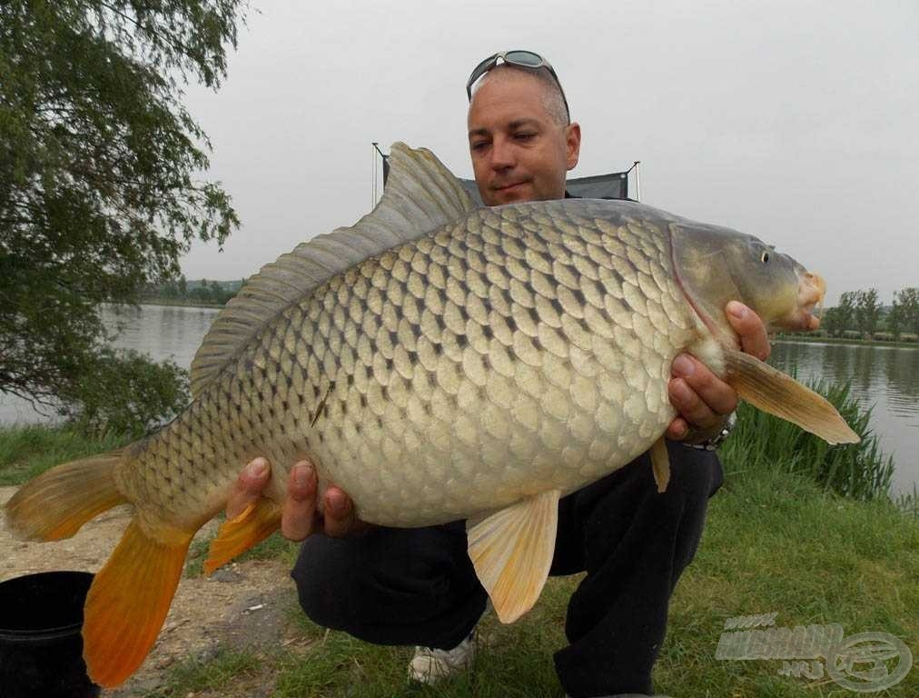 7,60 kg