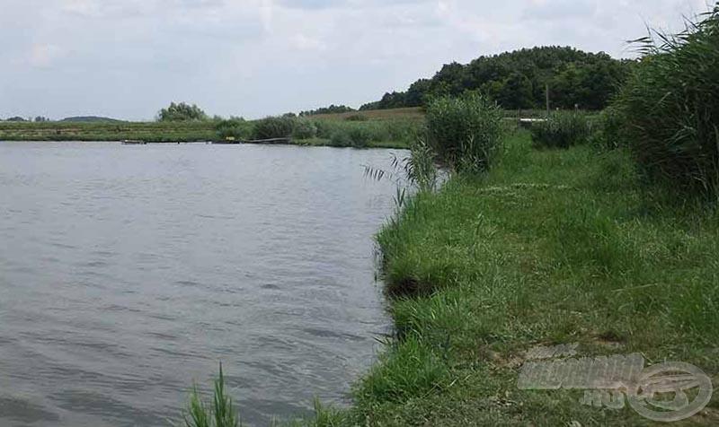 """A tó partja nincs kibetonozva, itt ez még nem """"divat"""", ennek ellenére a jó horgászfeltételek mindenhol biztosítottak"""