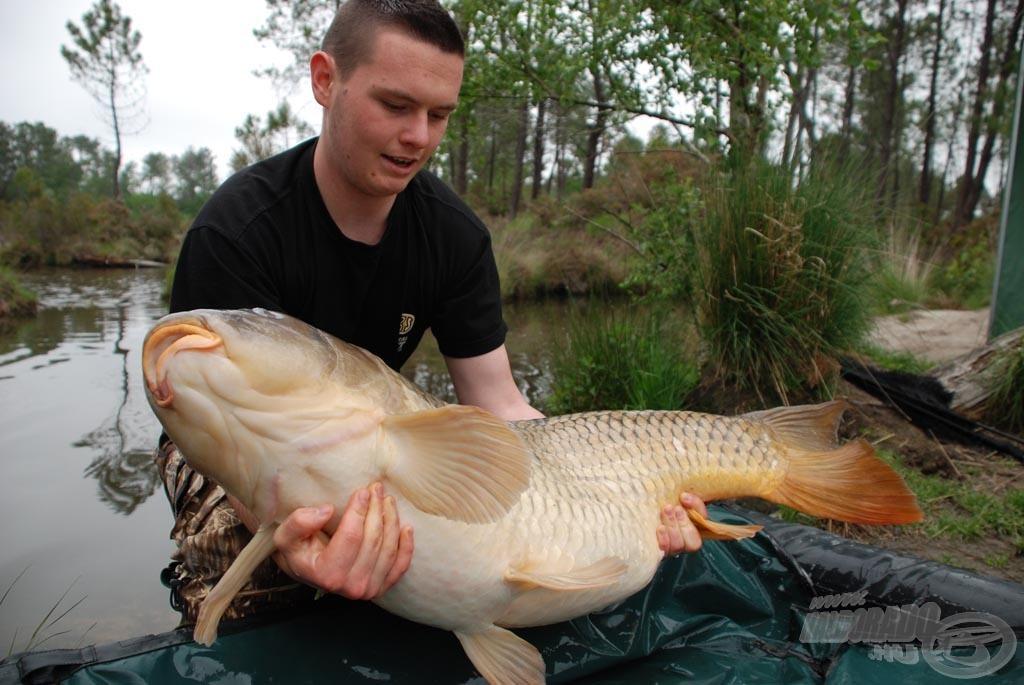 Ezen a fotón látszik igazán, hogy milyen hatalmas teste van egy ekkora halnak