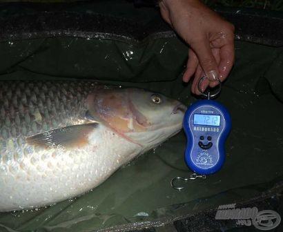 Vadvízi kalandok 17. rész - A szeszélyes Bodrog folyó
