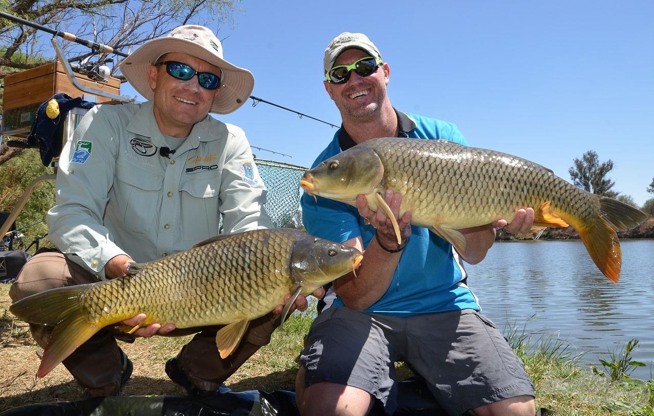 Jogos az öröm, csodálatos környezet, hasznos, érdekes információk és gyönyörű halak! Mi kell több?
