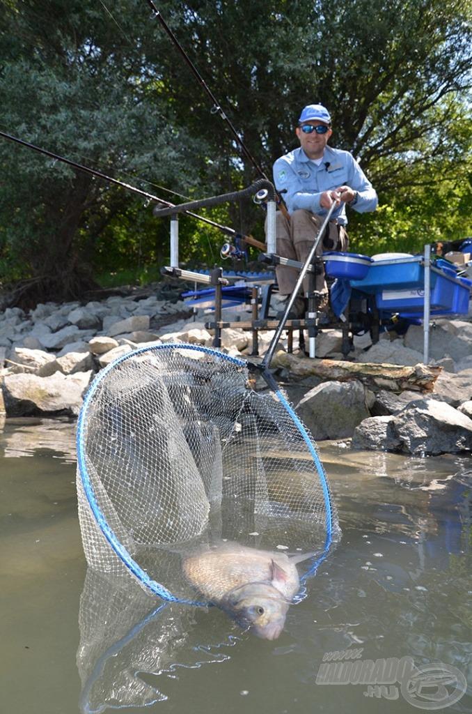 Ez nem egy rosszul sikerült szákolás, hanem egy hal visszaengedés. Minden kifogott halat visszaengedtem!