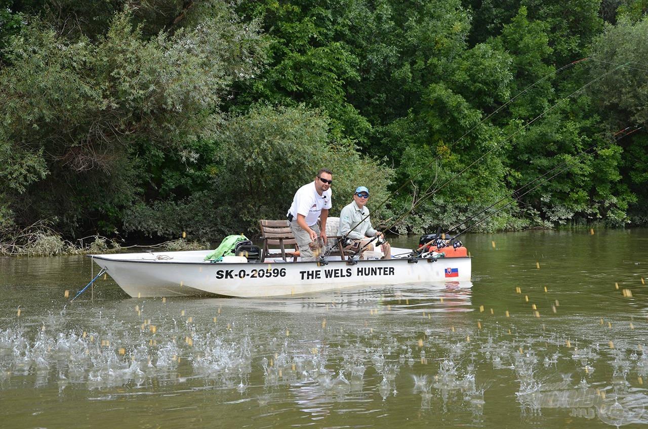A horgászat etetéssel kezdődött…