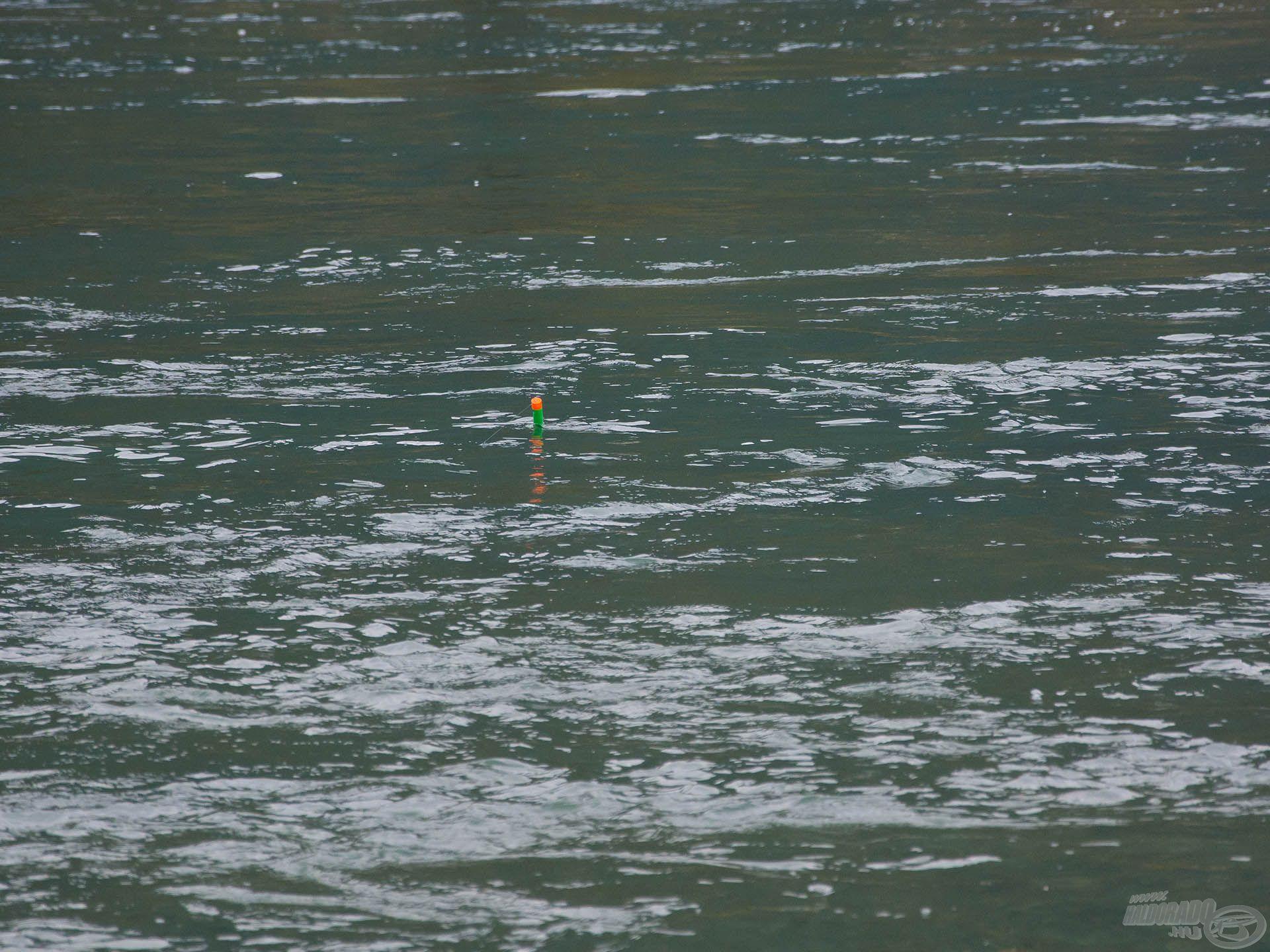 A kapás sem egy bonyolult dolog, úszó eltűnik, és már húzza is a botot a száguldó hal