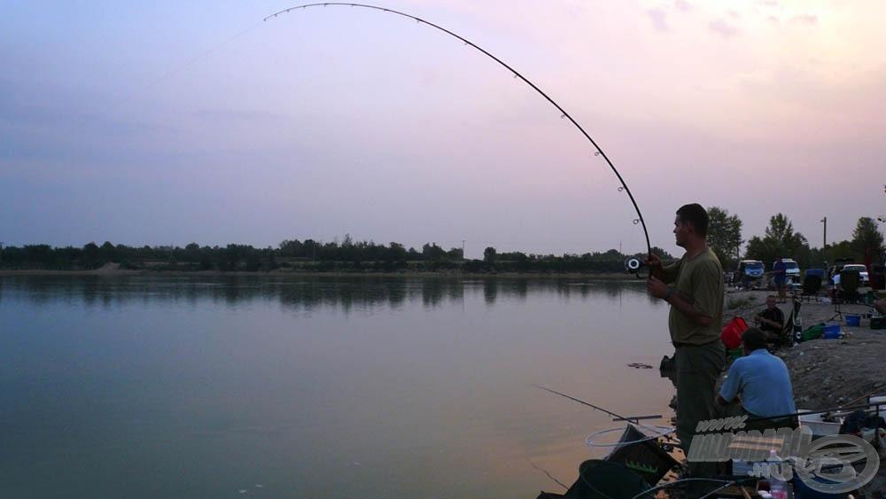 A meleg vízben nagyon hevesen védekeztek a halak, nem kis gondokat okozva ezzel nekünk