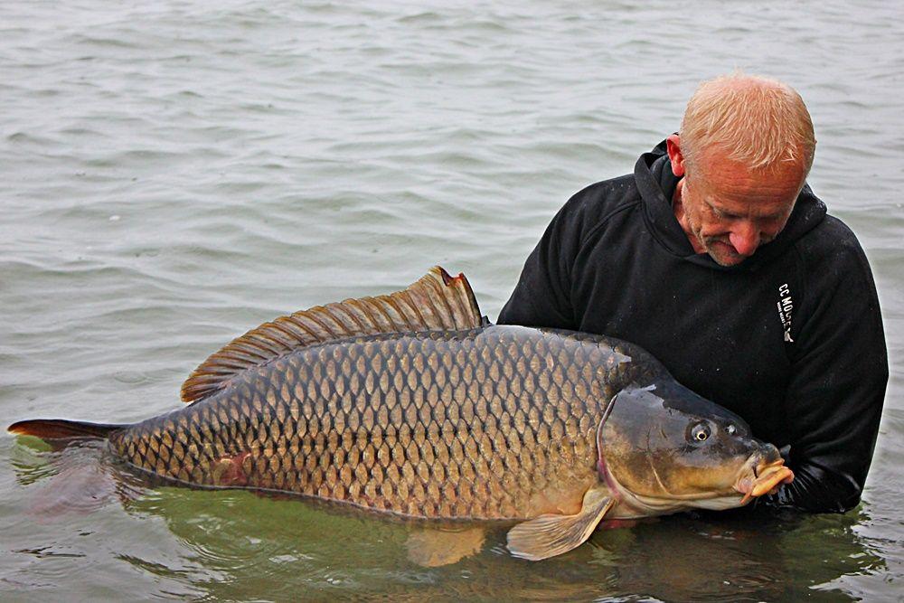 Folytyik Zoltán profizmusa, illetve a halak és a természet iránti alázatos tisztelete szintén megkérdőjelezhetetlen