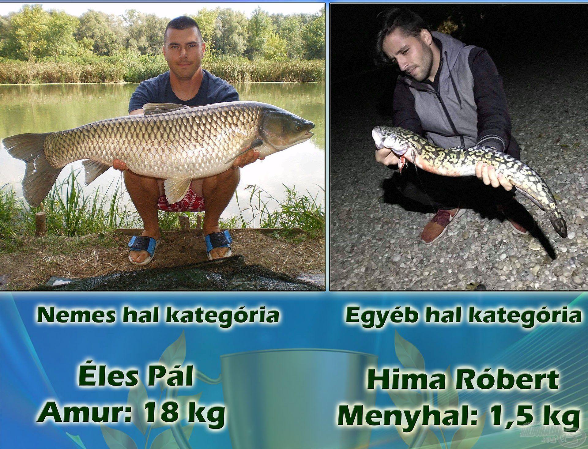 """""""Nemes hal"""" kategóriában a szavazatok 35,4%-ával Éles Pál, azaz """"Cunami"""" lett az első, kapitális amurjával, míg az """"Egyéb hal"""" kategória győztese Hima Róbert, alias """"Robi971228"""" és gyönyörű menyhala lett, nem kevesebb, mint 43,3%-kal"""