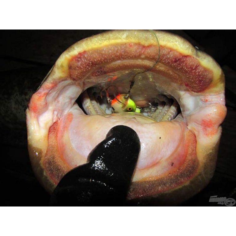 Blázy Tackle B. Mole deep - Bleak 10 cm