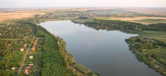Palotási tó