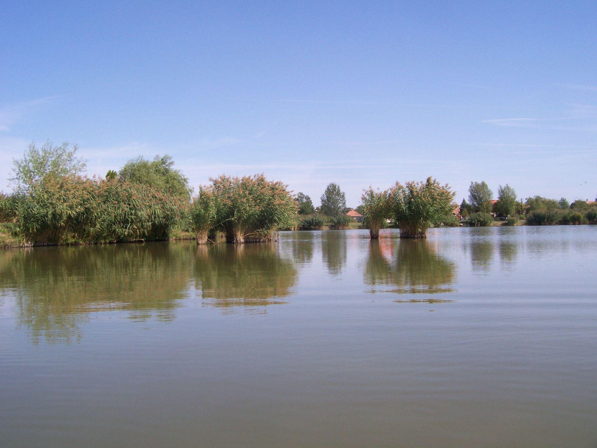 Vályogos tó